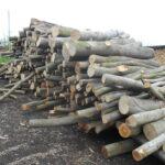 drewno opałowe - do cięcia
