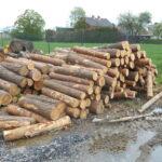 drewno sosna śląsk