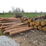 sprzedaż drewna kominkowego w Gliwicach